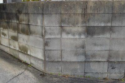 ブロック塀塗装前