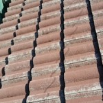 屋根の変色
