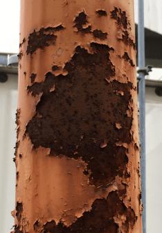 劣化した塗膜を除去