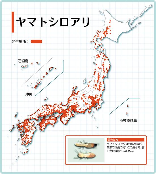 ヤマトシロアリの分布図